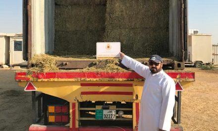 Alfalfa: de San Luis a Qatar