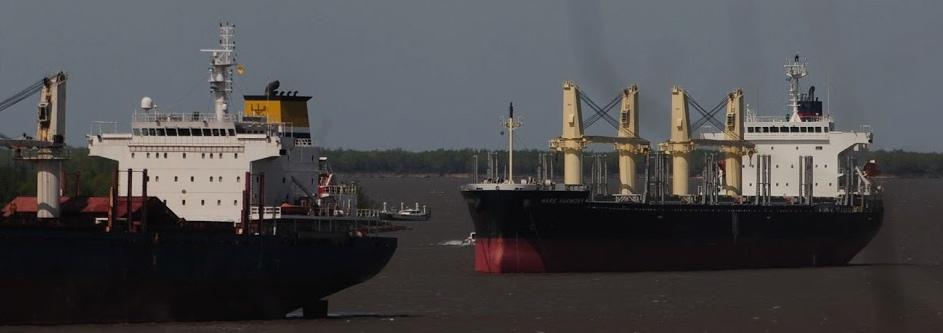 Prácticos solicitan que buques con escala en países limítrofes hagan cuarentena
