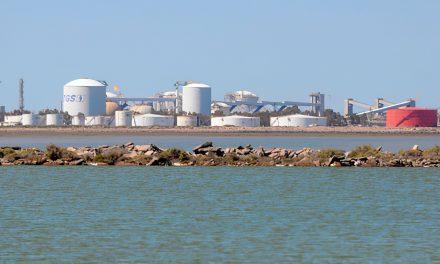 TGS y Excelerate Energy avanzan con su idea de hacer una planta de GNL en Bahía Blanca