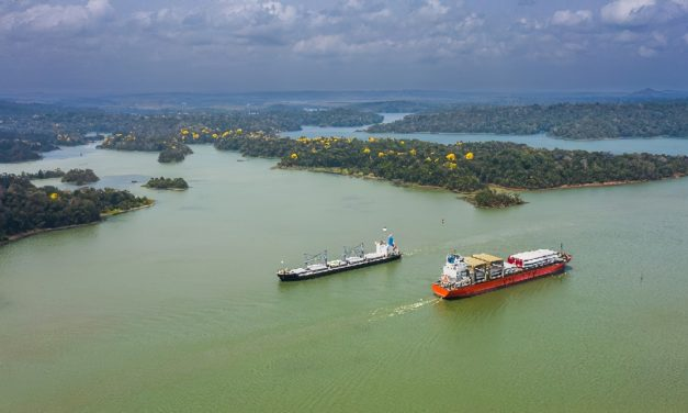 El Canal de Panamá implementa recomendaciones de la OMI  para proteger a las ballenas y otros animales acuáticos