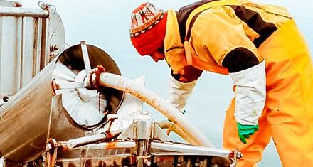 Tierra del Fuego: Ya está en funcionamiento la primera planta de procesamiento de pescado y mariscos en Almanza