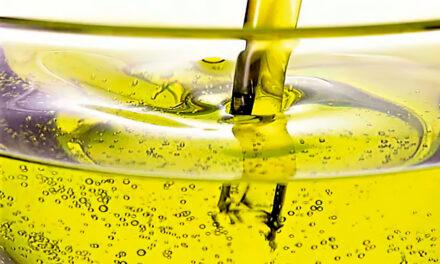El Congreso analiza tres proyectos sobre biocombustibles