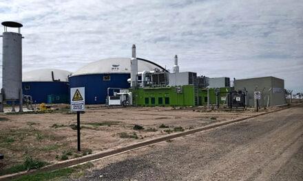Central de biogás aportará energía 2 Mw de energía y producirá biofertilizantes