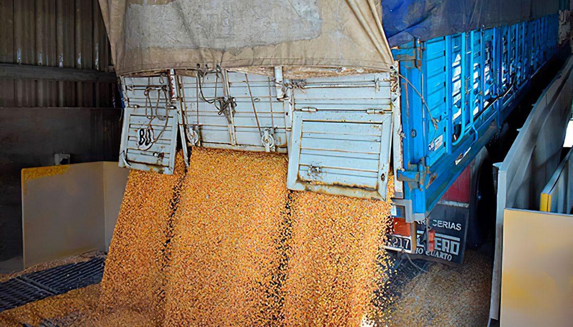 Agricultura busca alcanzar las 200 millones de toneladas de granos antes de 2030