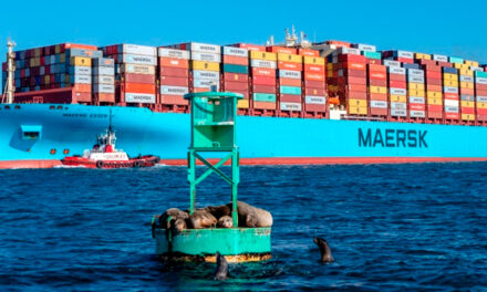 COVID-19 : COVAXX y Maersk se asocian para suministrar vacunas a nivel mundial