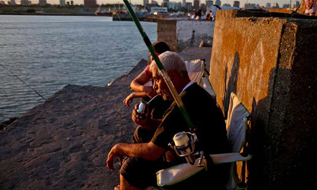 La multiplicación de los peces para alimentar a toda Argentina: política, no milagro