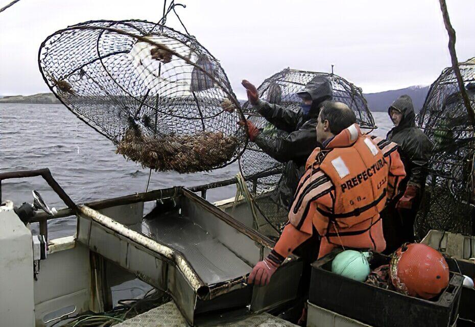 INIDEP capacitó a la PNA sobre la pesquerías bentónicas en la Plataforma Continental