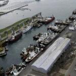 PNA: Criterios para la composición de las dotaciones de guardia en buques de matrícula nacional en los puertos
