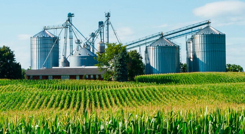 Agroindustria aumentó volumen exportado, pero mantuvo divisas en dólares