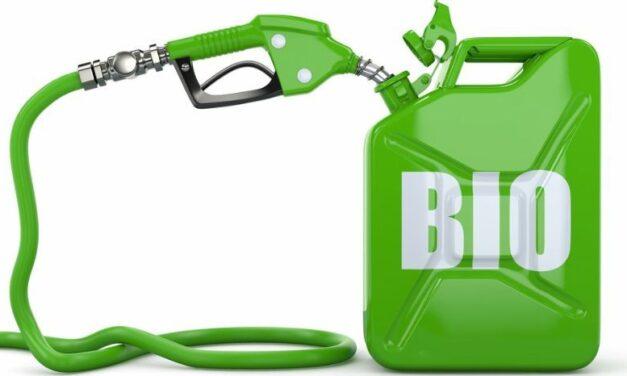 El Senado aprobó el nuevo marco regulatorio para los biocombustibles