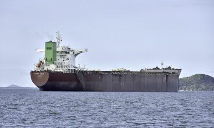 Brasil realiza una carga histórica de harina de soja