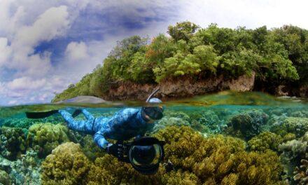 Los últimos lugares verdaderamente vírgenes de los océanos