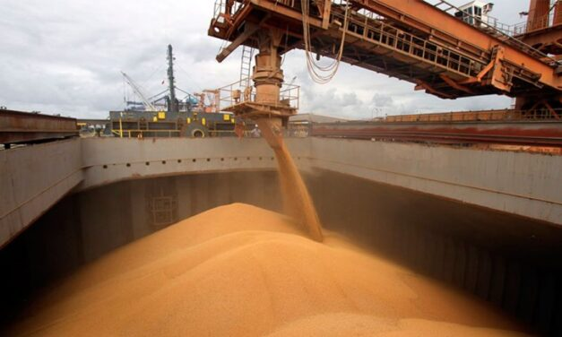 Comienza a llegar el trigo a los puertos del Gran Rosario