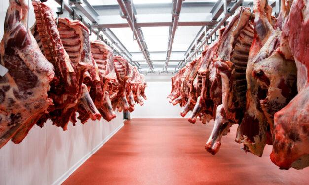 Demanda récord de China volvió a impulsar las exportaciones de carne