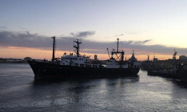 Tras 3 años, el INIDEP vuelve a realizar una campaña de merluza en la zona de cría norpatagónica