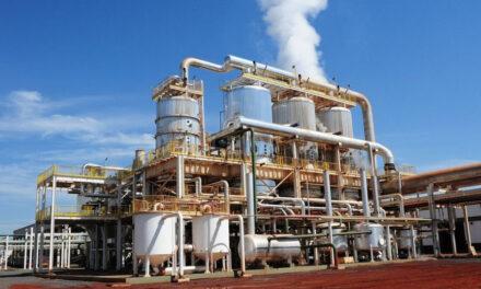 Biodiesel: Nación redujo la mezcla con gas oil y confirmó incremento de casi 90%