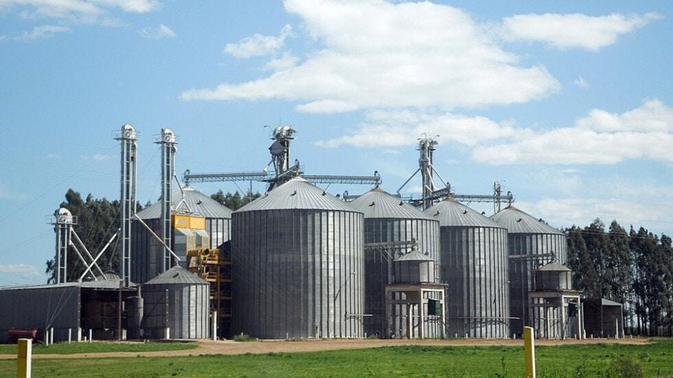 Agroexportadores liquidaron en enero un 32% más de divisas y alcanzaron US$ 2.140 millones