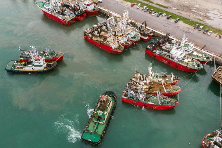 Puerto: un paro en la flota congeladora langostinera de tres empresas
