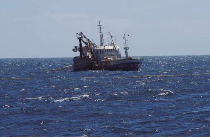 Presentan querella para que se investigue la pesca ilegal de merluza