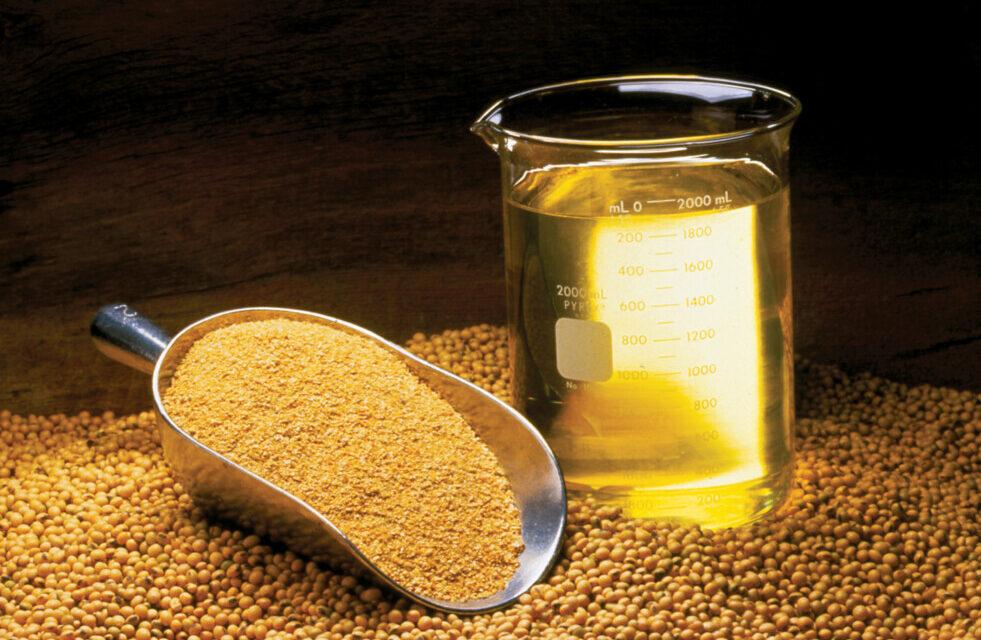 El precio FOB Up River del aceite de soja a granel se duplicó en un año