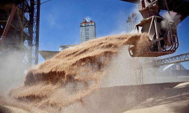 La liquidación de divisas del agro alcanzó los US$ 3.950 millones en el primer bimestre