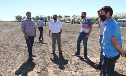 San Luis cultiva alfalfa para disminuir el desbalance hídrico de la Cuenca del Morro