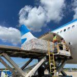 Así viajan las vacunas a la Argentina: una operación con múltiples desafíos logísticos