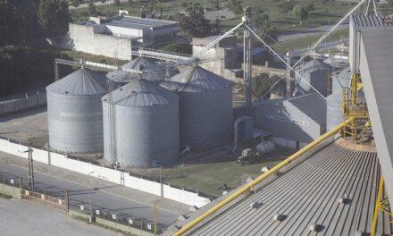 Agroindustria: empresas y sindicatos piden prioridad para vacunar a sus trabajadores