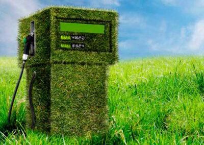 Argentina prorroga la ley de biocombustibles a la espera de debatir una nueva norma