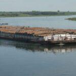 ¿Qué nos dejó el XV Encuentro Argentino de Transporte Fluvial?