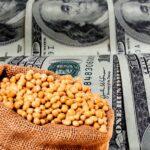 La soja ya no alcanza para sostener las reservas