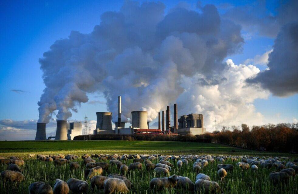 Foro de Comercio de la ONU 2021 explora cómo garantizar una recuperación económica del COVID-19 que proteja el planeta