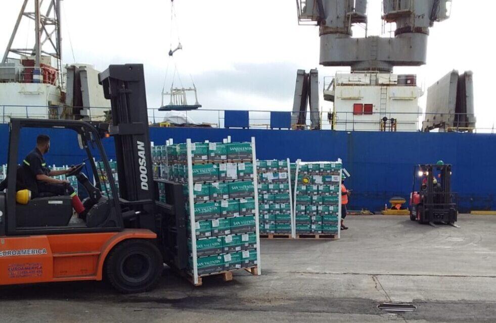 Argentina exportó frutas frescas cítricas a Rusia desde puertos bonaerenses