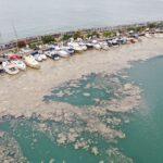 Un manto de moco marino amenaza el ecosistema del mar de Mármara en Turquía
