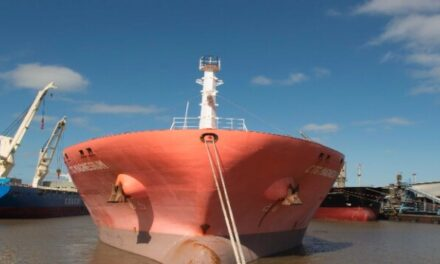 Puerto La Plata: el movimiento de carga, durante el primer semestre del año, supera los dos millones de toneladas