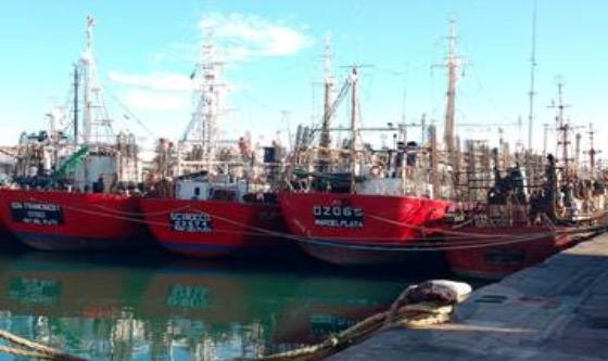 Solicitan la apertura de la temporada de pesca del calamar en el 44ºS