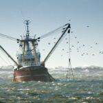 """Tierra de Fuego: """"Encontramos en la pesca de altura una oportunidad inmejorable para el desarrollo de la provincia"""""""