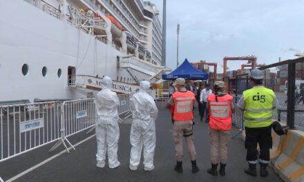 ¿Cuál es el rol del Oficial de Protección de la  Instalación Portuaria?