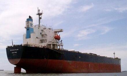El granelero Rosco Plum obstruye la navegación en el kilómetro 47 del canal Martín García