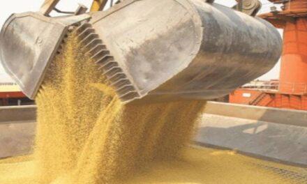 Las empresas del sector agroexportador liquidaron en agosto US$ 3.049,78 millones