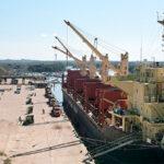 Desde Concepción del Uruguay zarpó un buque ultramarino con troncos de pino hacia India