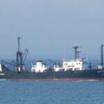 El Holmberg realiza una campaña de merluza en la Zona Común de Pesca Argentino-Uruguaya
